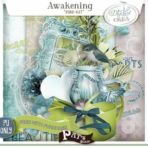 Patsscrap_Awakening_fwp