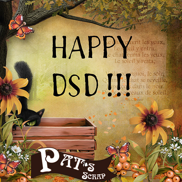 Patsscrap_Chat_alors_freeSP_DSD