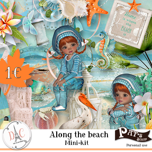 Patsscrap_along_the_beach_PV_mini_kit1euro