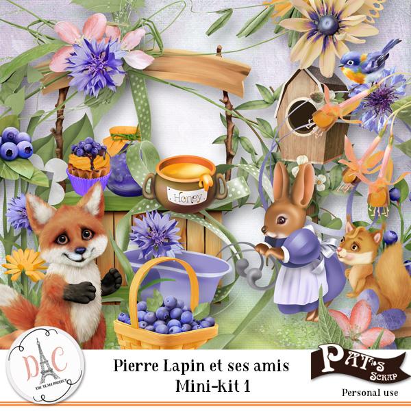 Patsscrap_Pierre_lapin_et_ses_amis_PV_minikit_1.jpg